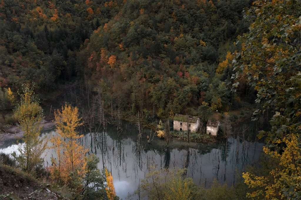 Alla scoperta del Parco delle Foreste Casentinesi