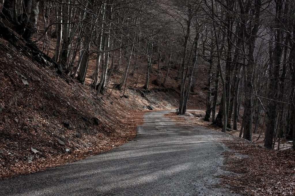 Escursione al Monte Catria