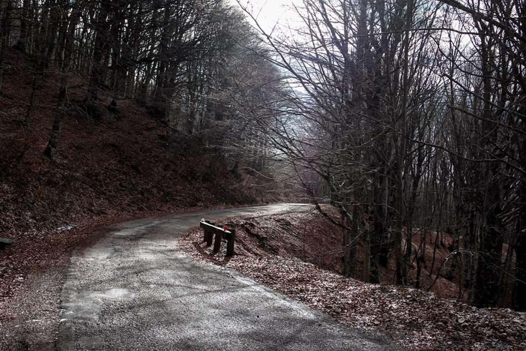 Via del Monte Catria