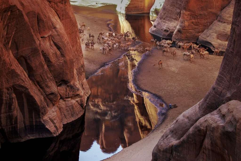 Guelta d' Archei. Ciad