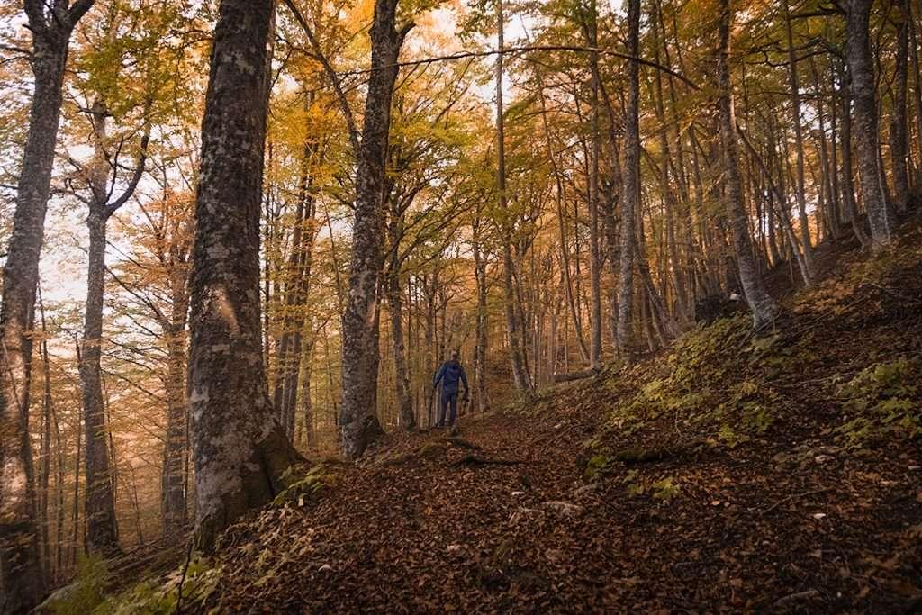 Escursione al Monte Carpegna